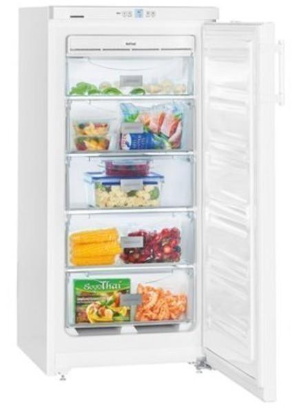 Congelador Liebherr GNP1913-22 Vertical Nf 125 F