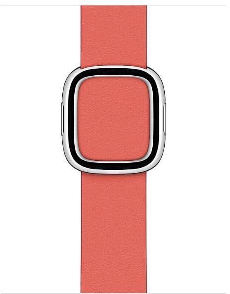 Accesorio Smartwatch APPLE WATCH 40 PNK CITRUS MBK L